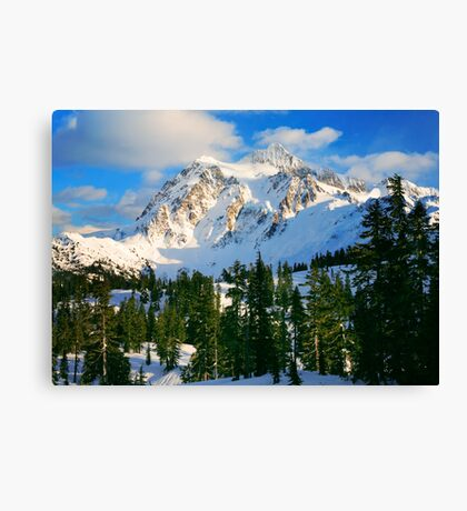 Shuksan Winter Canvas Print