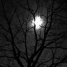 Yule Tree. Julbaum. Wintersonnenwende. von Christine Krahl