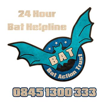 The Detectorists B.A.T Bat Action Trust by Eye Voodoo by eyevoodoo