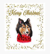 Merry Christmas Collie Dog Photographic Print