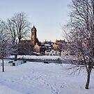 Peebles In Winter by Lynne Morris
