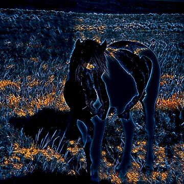 Cosmos Horse by ChadKroll