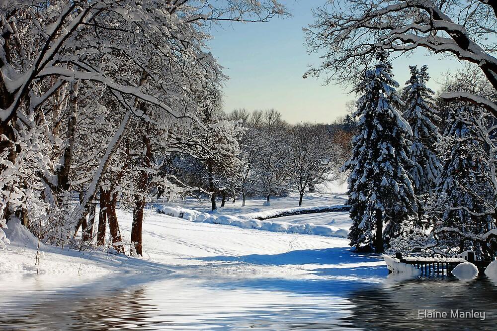 Winter Scenes # 2 by Elaine  Manley