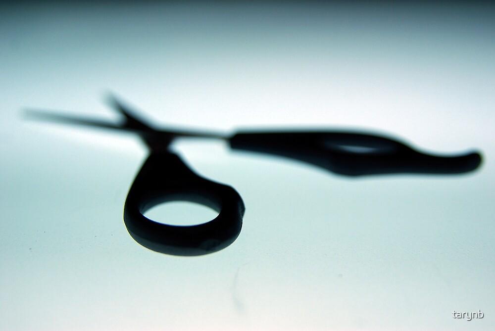 Brooding Scissors by tarynb