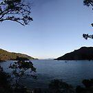 Nara inlet. Queensland by Alexey Dubrovin