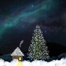 Snowy Wonderland by mrthink