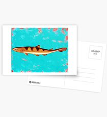 Dogfish Postcards