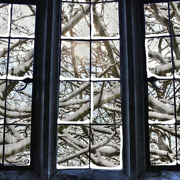Winter Window by ViczS
