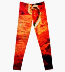 SANKARA Leggings