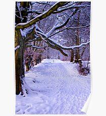 A Woodland Walk Poster