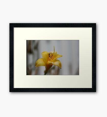 Waiting for Monica - Yellow Framed Print