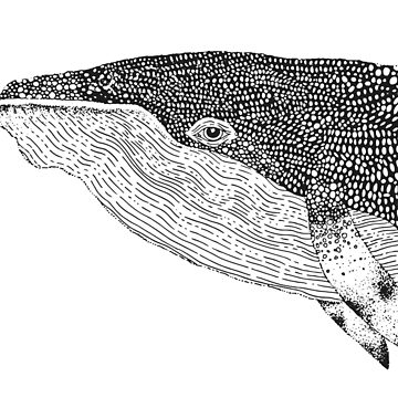 Graphic black and white Whale by nastybo