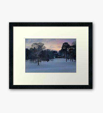 WINTERS GARDEN Framed Print