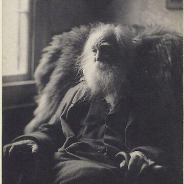 Walt Whitman vintage photo by Geekimpact