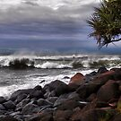 Burleigh Headland by Nickie