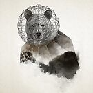 Wild Bear Face Geometric Illustration by Aniko Gajdocsi