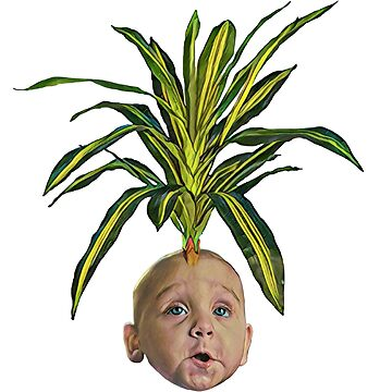 BABY PLANT by Matterotica
