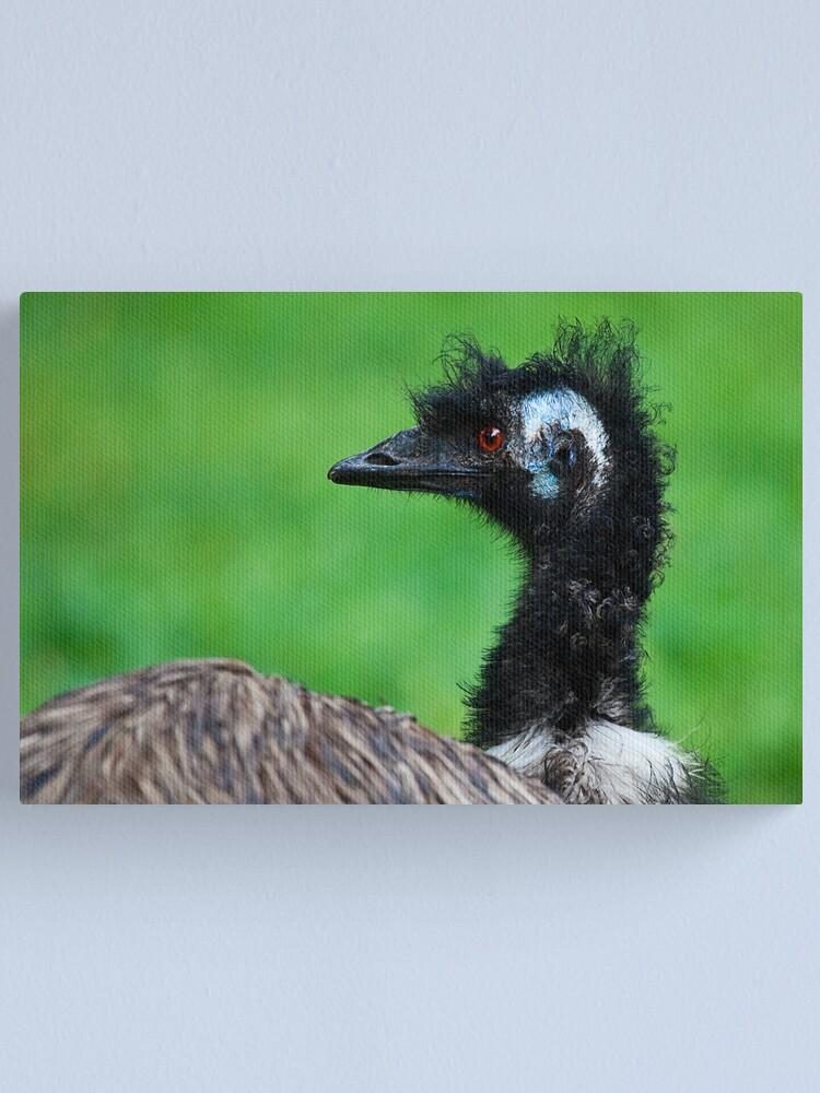 Alternate view of Emu Canvas Print