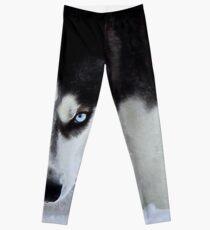 Leggings Si las miradas podrían matar - Husky blanco y negro