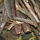 Wood pile by Vicki Hudson