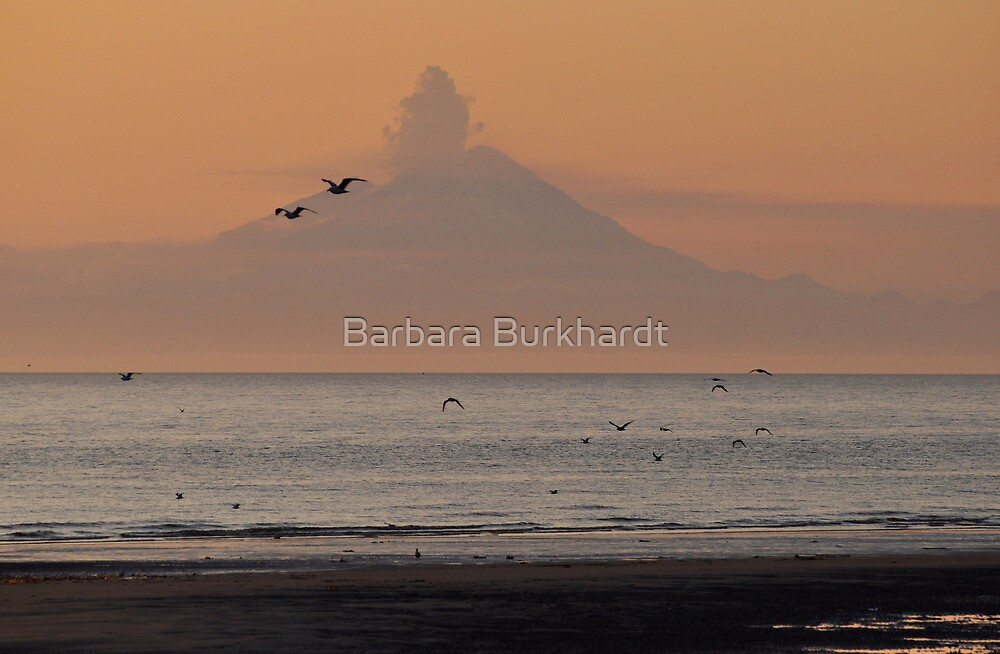 All Fired Up - Redoubt Volcano by Barbara Burkhardt
