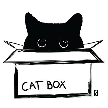 Cat box - a cat in a box by geep44