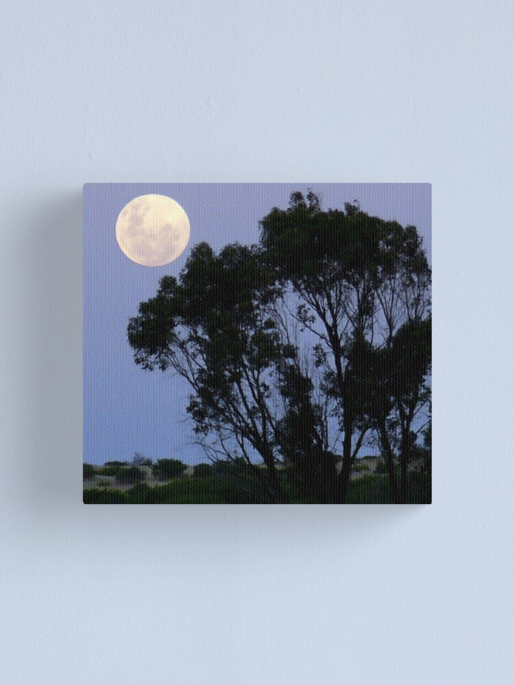 Alternate view of New Year Moon Canvas Print