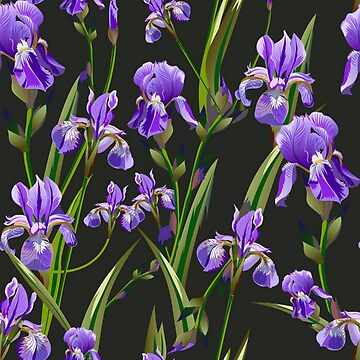 Gorgeous Iris Floral by pugmom4