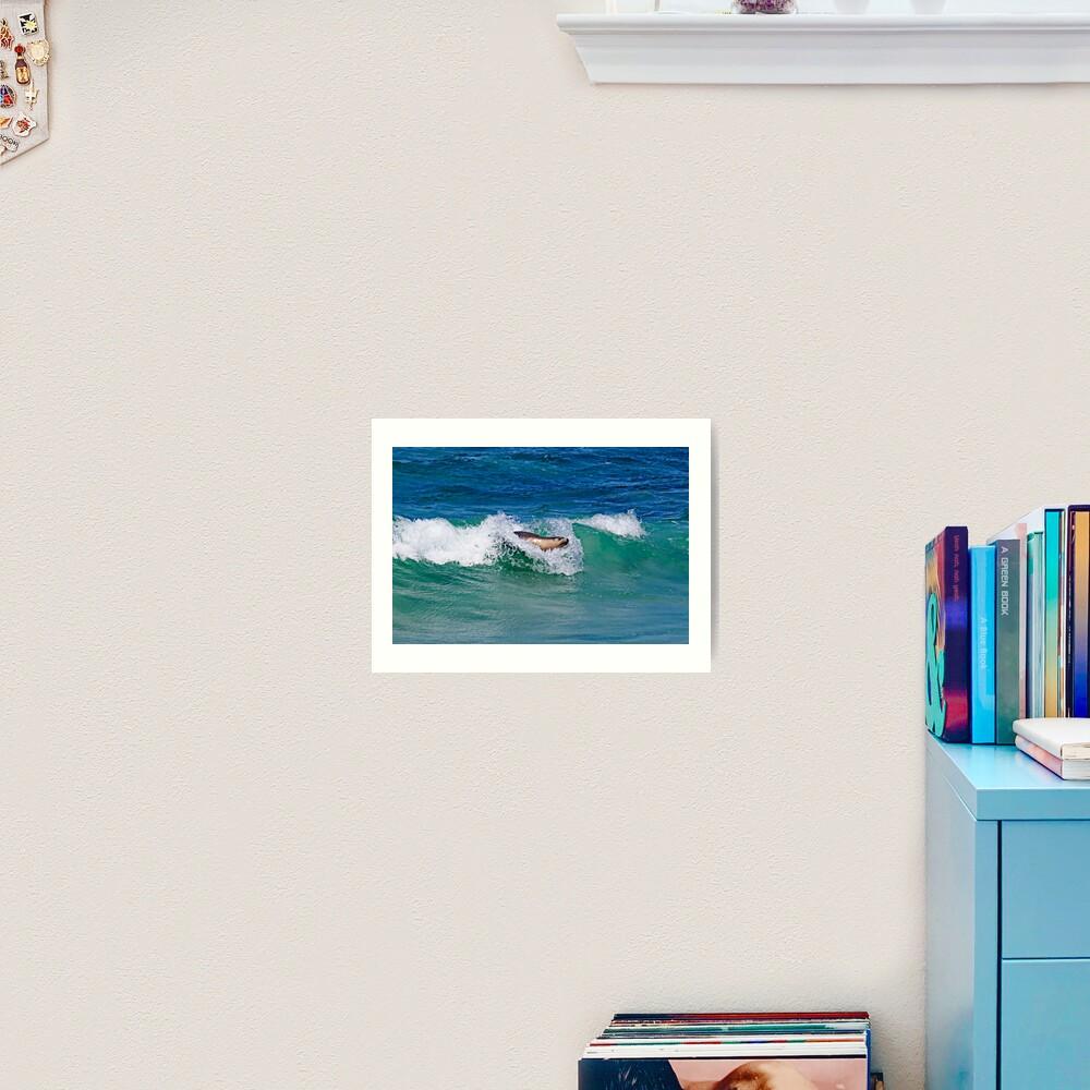 Surfing Sea Lion Art Print