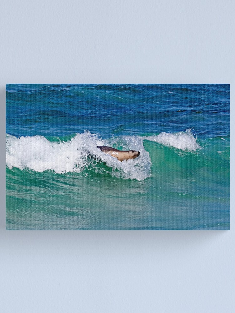 Alternate view of Surfing Sea Lion Canvas Print
