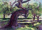Bowing Oak (pastel) by Niki Hilsabeck