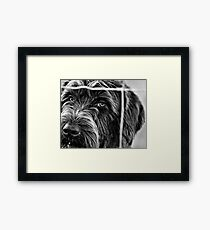 But I Want To Come Out And Play TOO!!! Framed Print