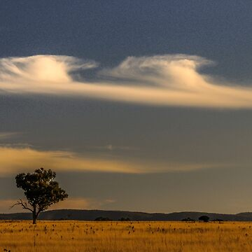 Liverpool Plains by fotoWerner