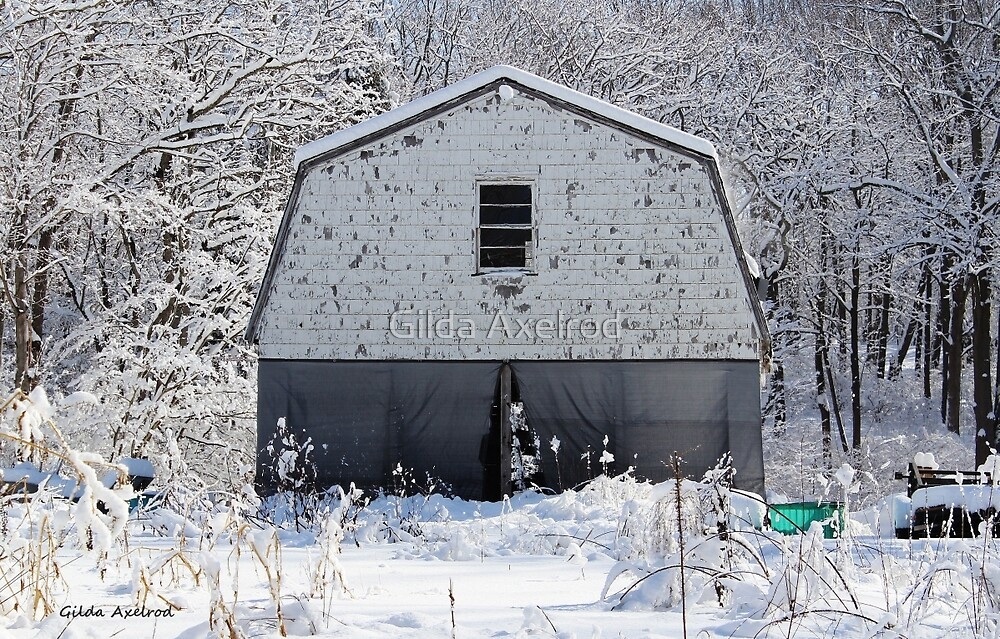 Old Barn after the Snow by Gilda Axelrod
