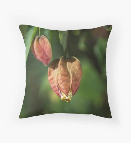 Chinese Lantern Buds Throw Pillow