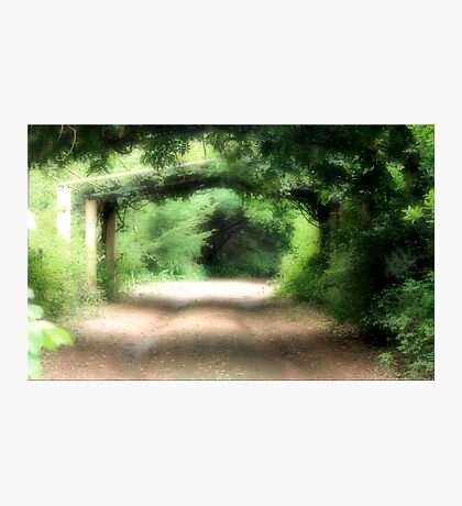 Secret Garden Photographic Print