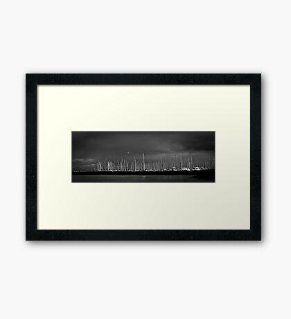 Fremantle Seagull Framed Print