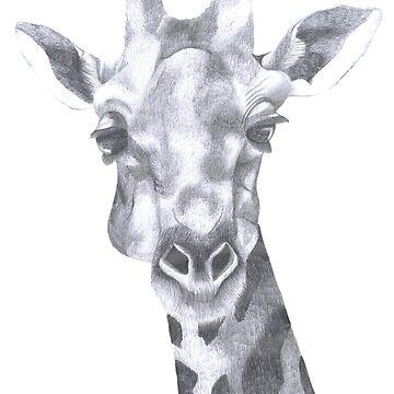 The Giraffe by caromazing