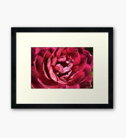 Black And RED Framed Print