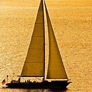 Sailboat in Golden Bay by dbvirago