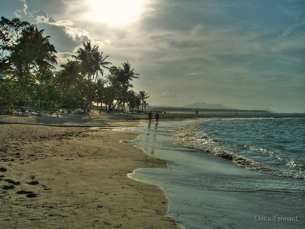 Dreaming of Paradise! by Claire Tennant