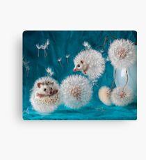 Hedgehogs- dandelions. Photographer Eremina Elena. Canvas Print