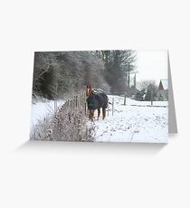 Wrapped up warm Greeting Card