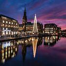 Hamburg Christmas Market by Dawn van Doorn