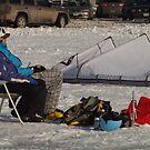 Sunbathing Canadian Style by John Beamish