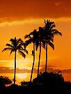6:15 PM Hawaii Time by Alex Preiss