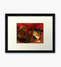 Luscious Lily Framed Print