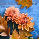Oak Leaves and Dahlia Flowers by OLIVIA JOY STCLAIRE