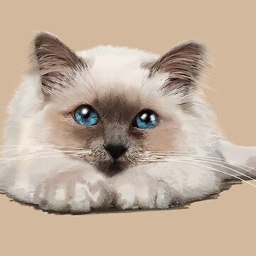cat by sibosssr