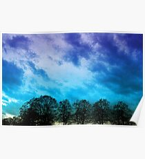 Sky & Trees Poster